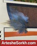 حمله با نارنجک به اتوبوس تیم در راه ورزشگاه + عکس